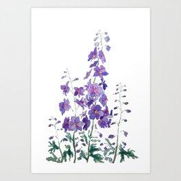 purple blue delphinium watercolor Art Print