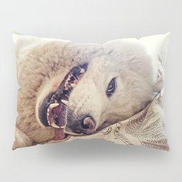 Playful One Pillow Sham
