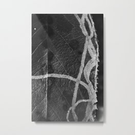 Natural Design is Outside the Lines Metal Print