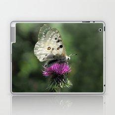 Butterfly on Thistle Flower Laptop & iPad Skin