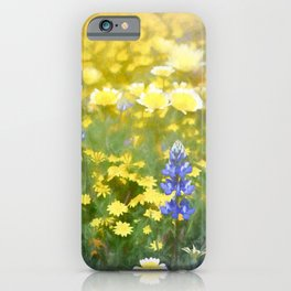 Colors 162 iPhone Case