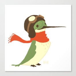 Aviator Hummingbird Canvas Print