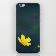 Gundega iPhone & iPod Skin