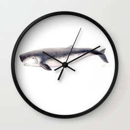 Pygmy sperm whale Wall Clock