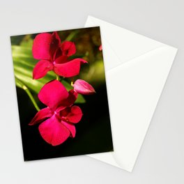 Red For Love Stationery Cards