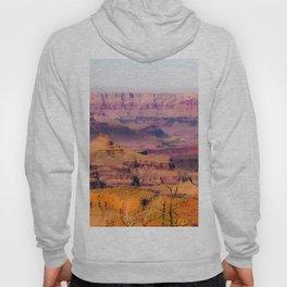 desert view at Grand Canyon national park, USA Hoody