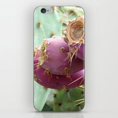 Feast iPhone Skin
