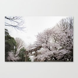 Shrine amongst cherry blossoms in Ueno Park Canvas Print