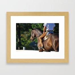 Horse Park 137 Framed Art Print
