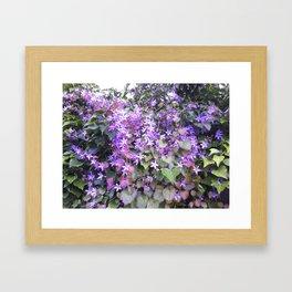 Purple Hedge FLower Framed Art Print