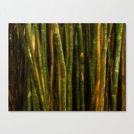 Bamboo Dreams Canvas Print