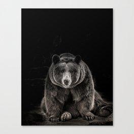 hello bear Canvas Print