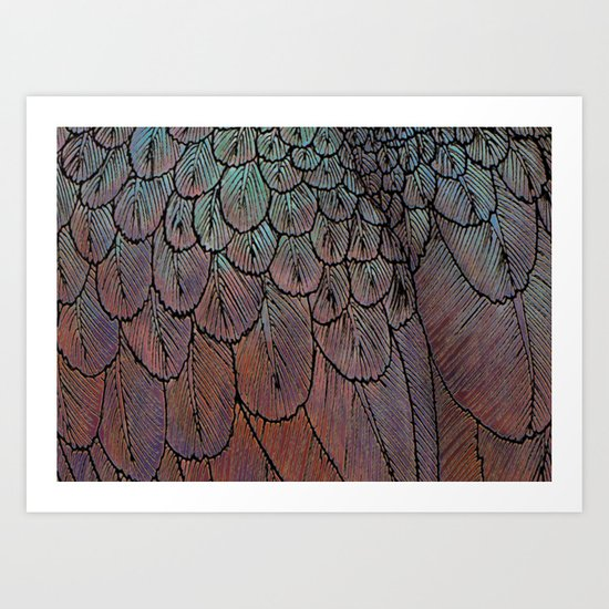 Feather Detail Art Print