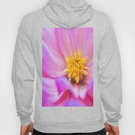 Emerging Beauty Dahlia Hoody