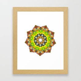 Radiate 004 Framed Art Print