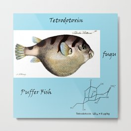 Tetrodotoxin Puffer Fish Metal Print