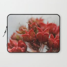 After the Petals Have Fallen Laptop Sleeve