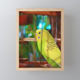 A feathery friend Framed Mini Art Print