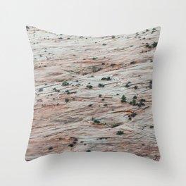 Rock Slide (Zion National Park, Utah) Throw Pillow