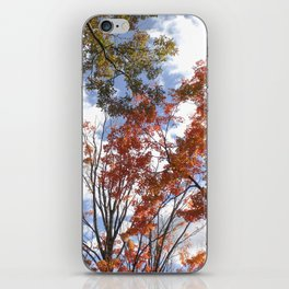 Fall Sky View, Wellesley College iPhone Skin