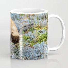 mushroom in swedish forest Coffee Mug