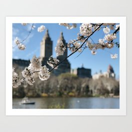 Central Park 1 / New York City Art Print