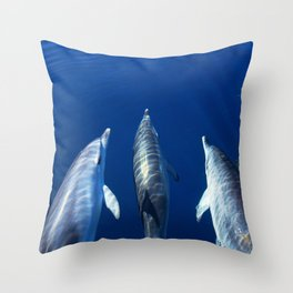 Playful and friendly dolphins Throw Pillow