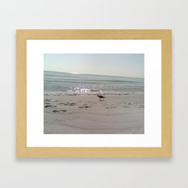FL 005 Framed Art Print