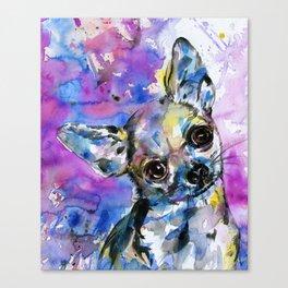 Chihuahua No. 1 Canvas Print