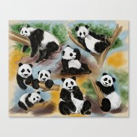pandas Canvas Prints featuring Pandas by Helene Michau