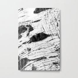 Birch bark pattern Metal Print