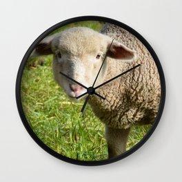 Lamb Closeup in the Vineyard Wall Clock