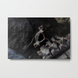 Remains of a Bygone Predator, Detached Metal Print