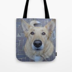 Treat? Tote Bag