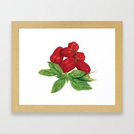 San Marzano tomato + Basil Framed Art Print