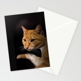 The Cat Who Loved Me Stationery Cards