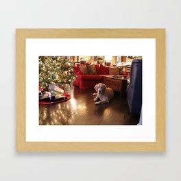 Golden Retriever Ready to Open Gifts Framed Art Print