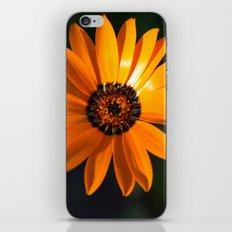 Vibrant Orange Flower iPhone Skin