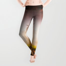 Cleansing Leggings