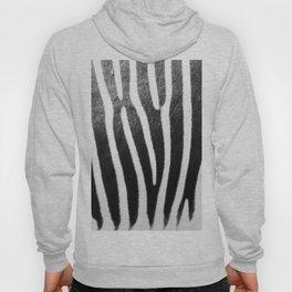 Wildlife Collection: Zebra Hoody