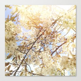 Into Vanilla Sky Canvas Print