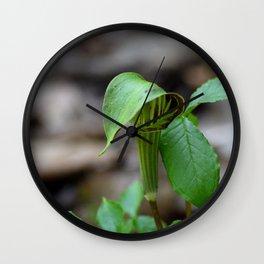 Michigan Wild Plant Wall Clock