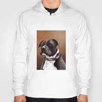 bull terrier Hoodies featuring Staffordshire bull terrier 2 by Carl Conway