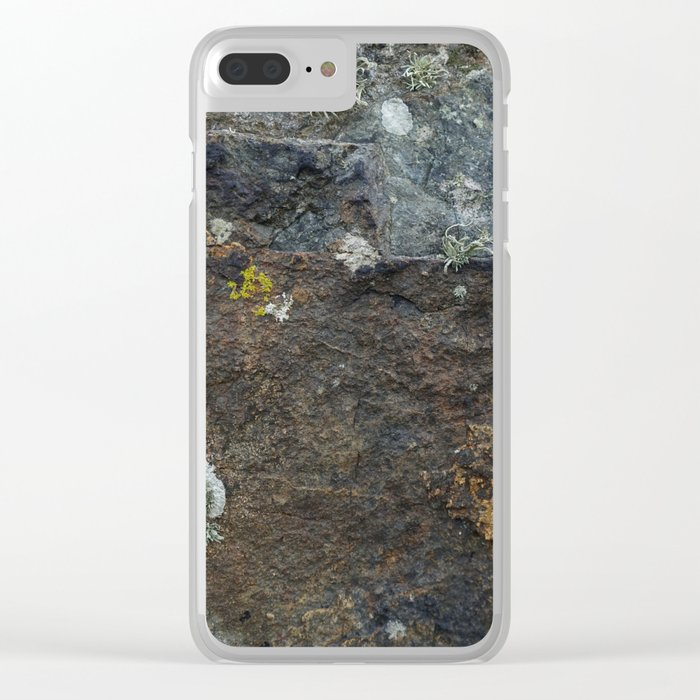 Natural Coastal Rock Texture with Lichen and Moss Clear iPhone Case