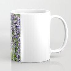 BLUE FIELD of LAVENDER Mug