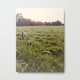 Marsh Meadows Metal Print