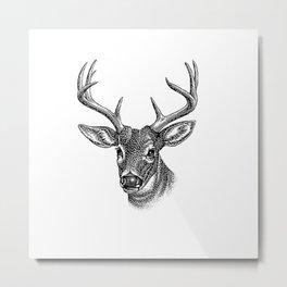 A deer 5 Metal Print