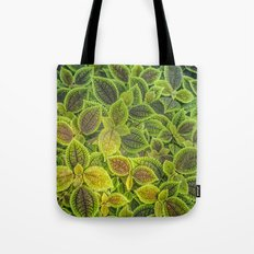 Friendship plant tote bag by photosbyhealy