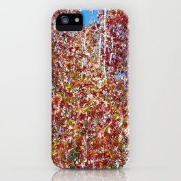 Autumn in Seattle iPhone Case