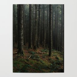 Gorge Woods Poster